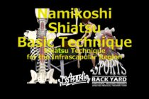 Namikoshi Shiatsu Basic Technique